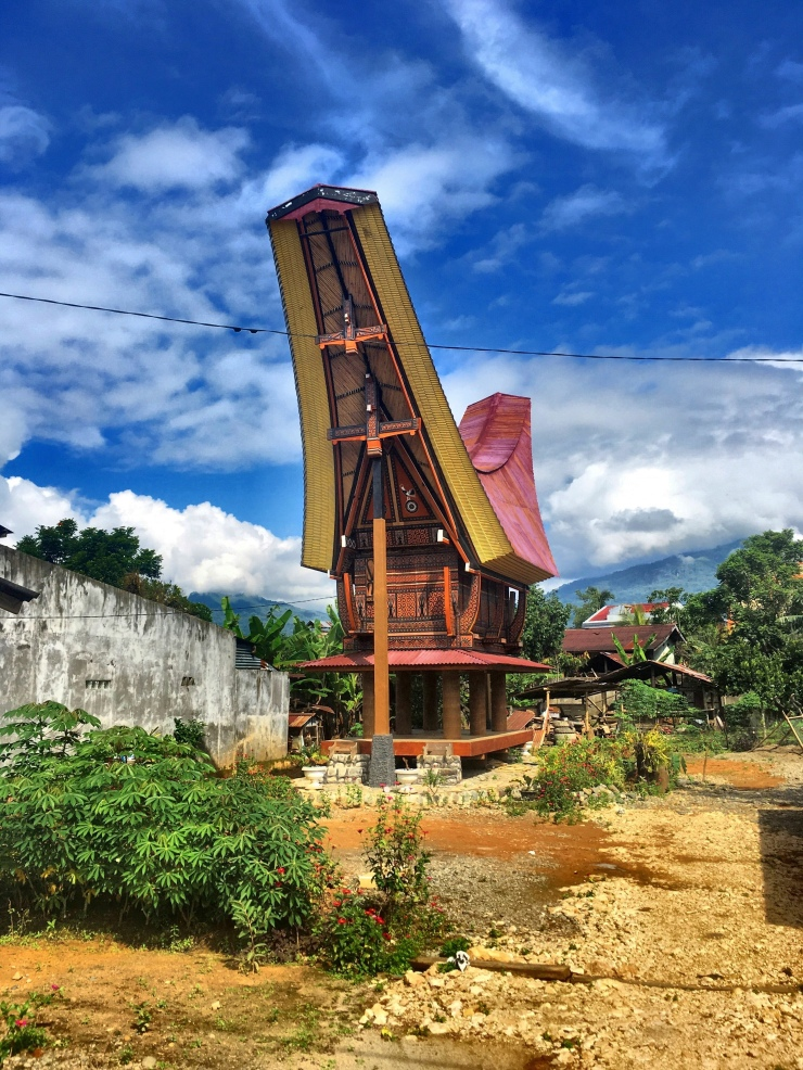 Curious Toraja architecture: They originally used these houses to store rice.