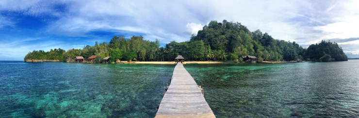 The Togean Islands – this is Pulau Kediri as seen from the Kadidiri Paradise jetty.