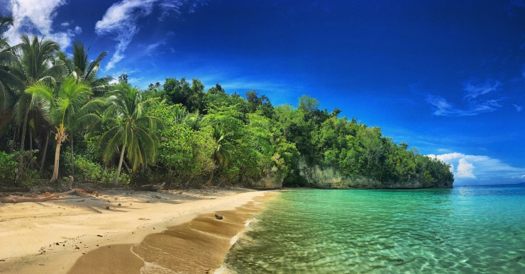 Robinson Crusoe style beach near Jellyfish Lake.