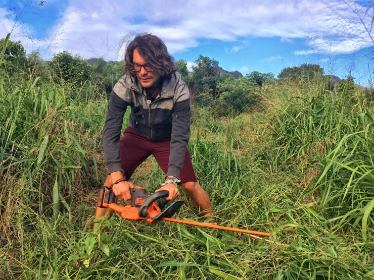 Working with the brush-cutter on Mark's farm.